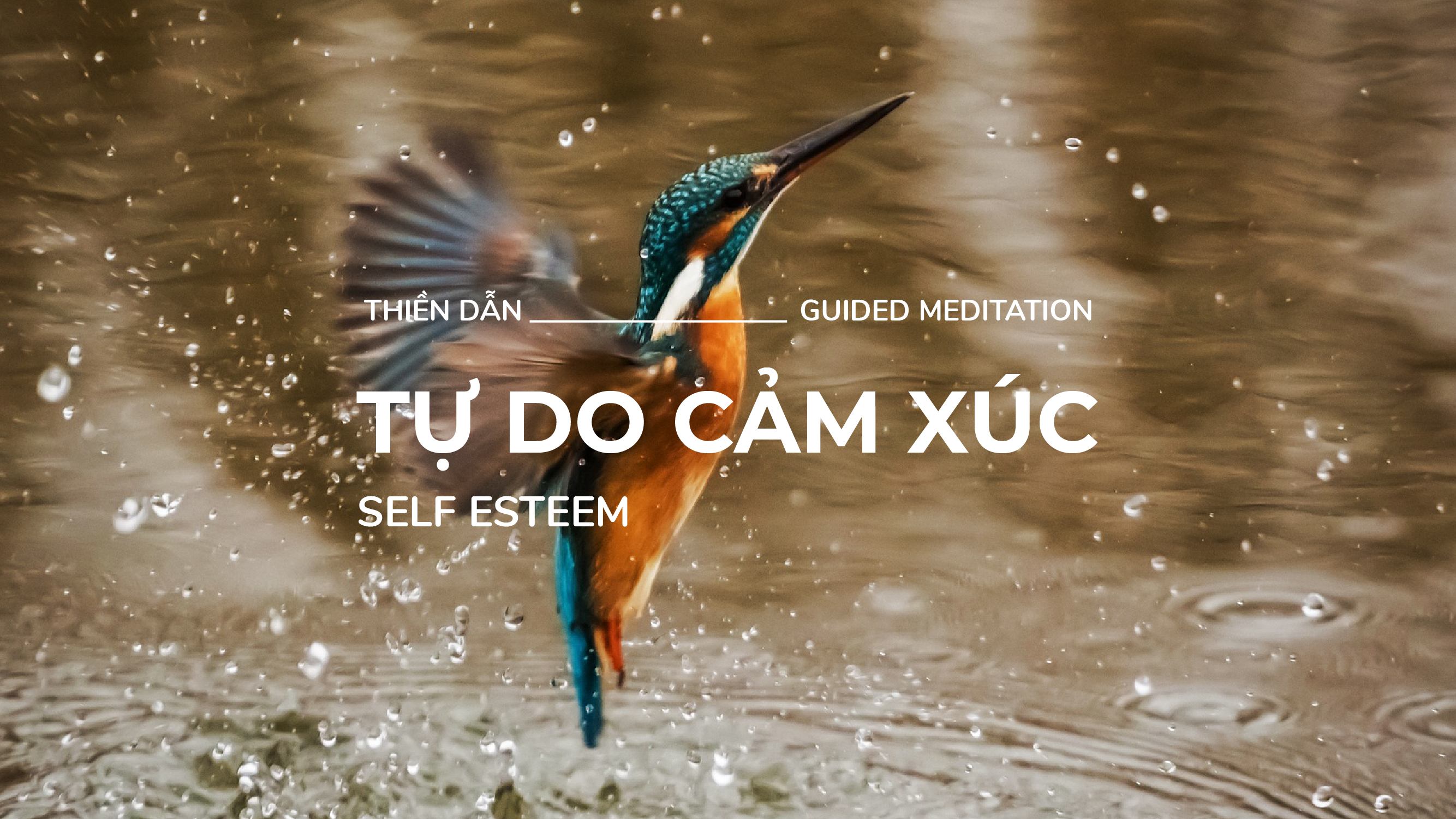 Guided Meditation – Self Esteem – 13 Minutes